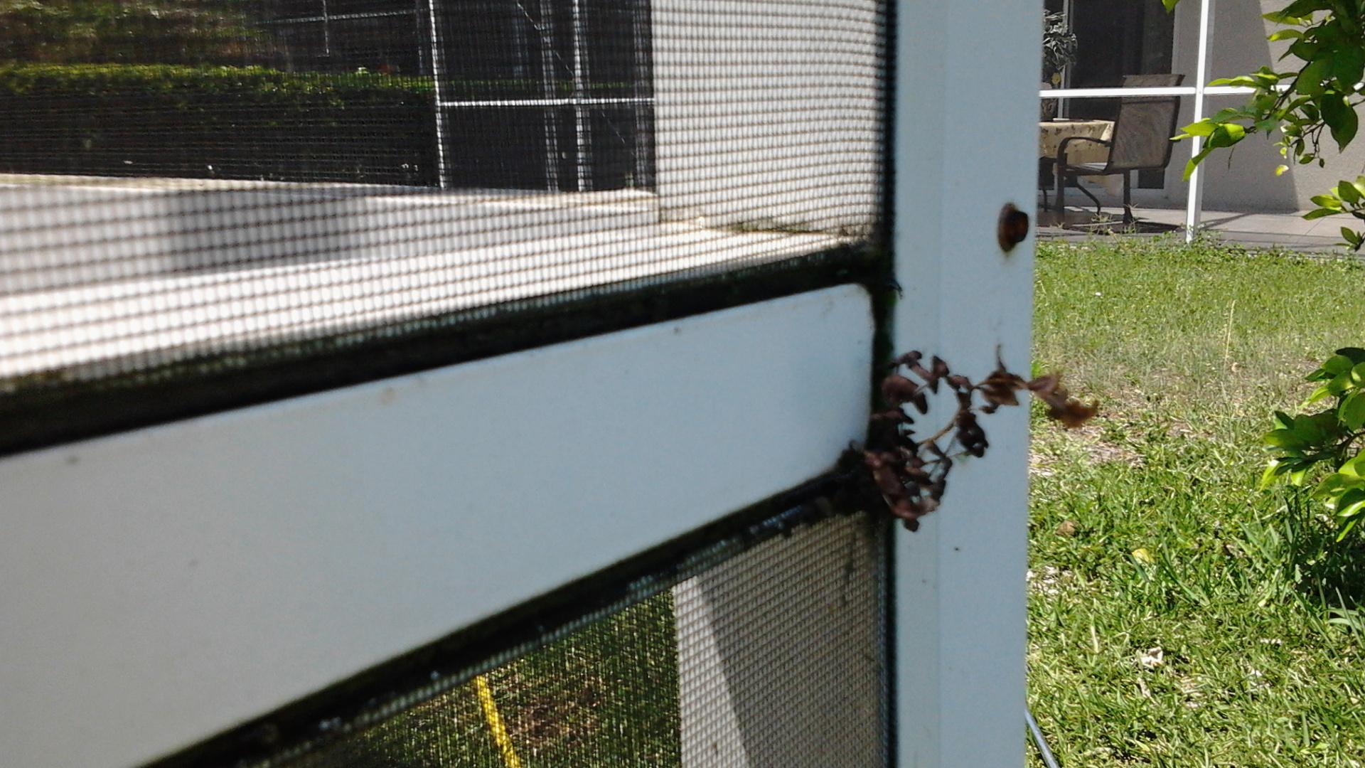 I Do That Screen Repair Torpoint Rd Winter Garden
