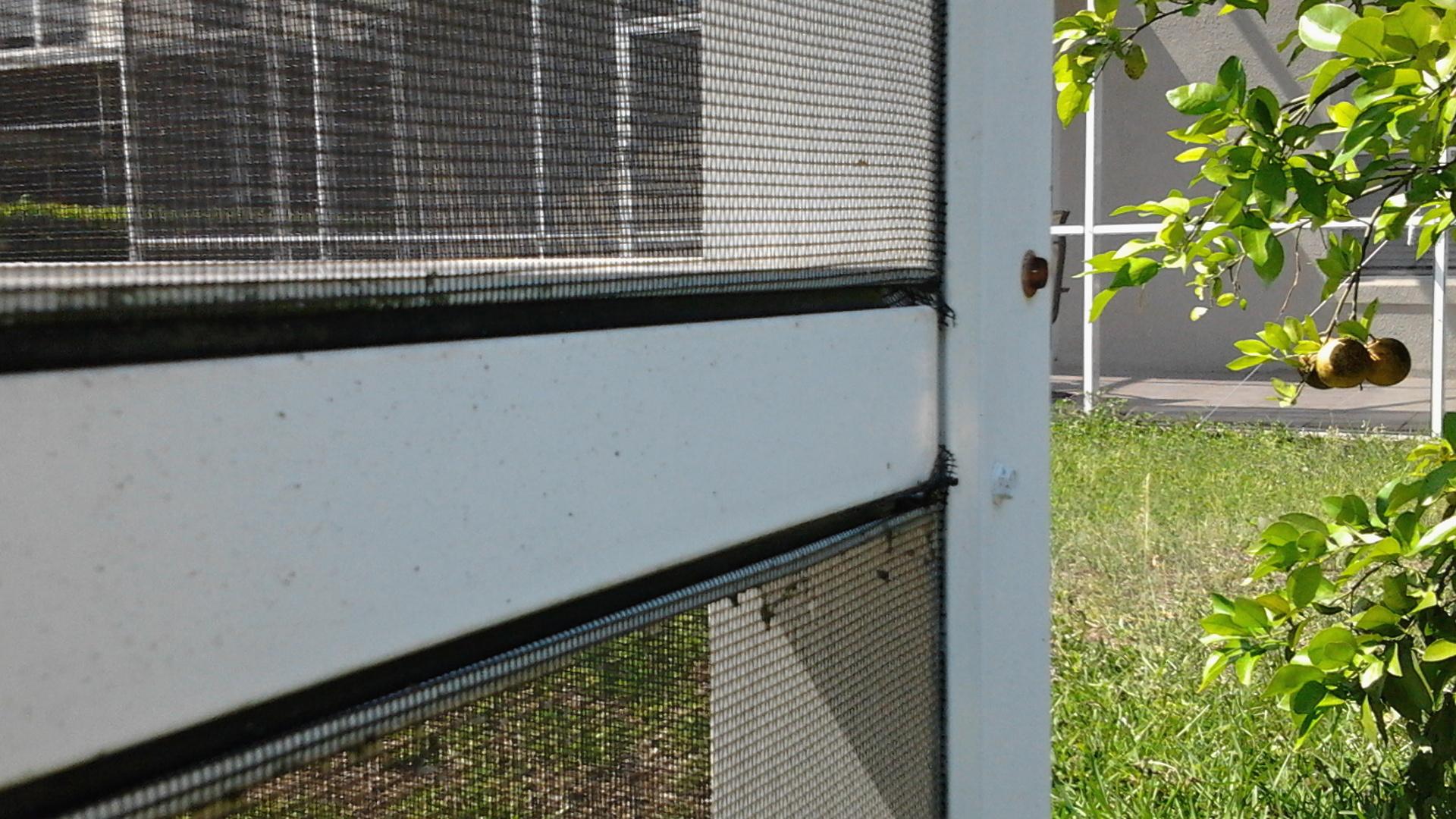 i do that screen repair torpoint rd winter garden pressure