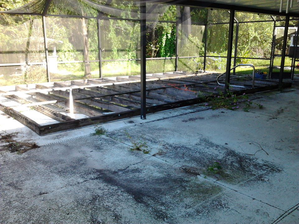 03-before-pool-enclosure-complete-re-screen.jpg