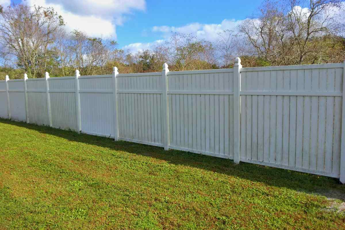 11-before-pressure-wash-vinyl-fence.jpg