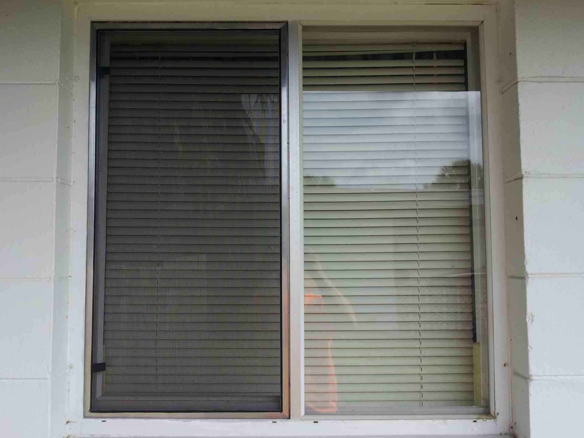window-screen-02.jpg