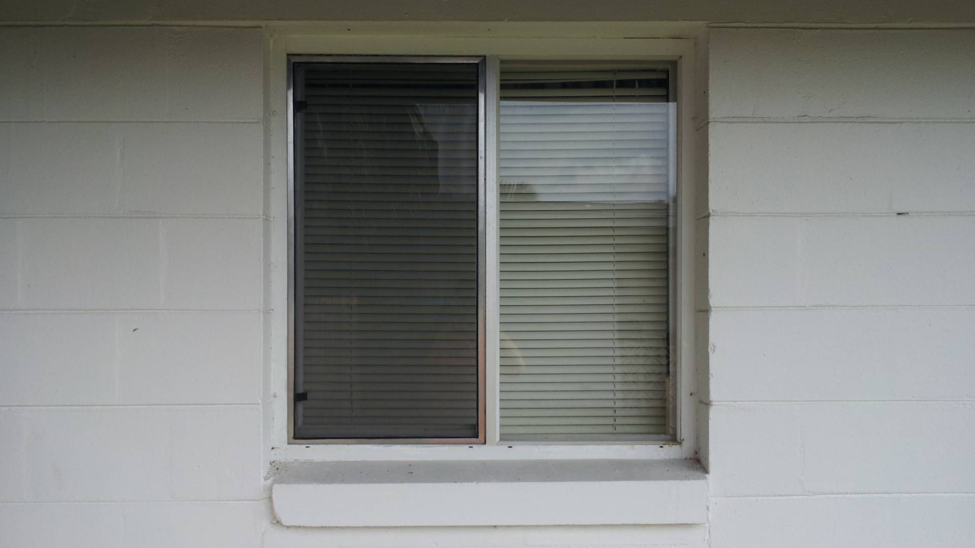 window-screen-03.jpg