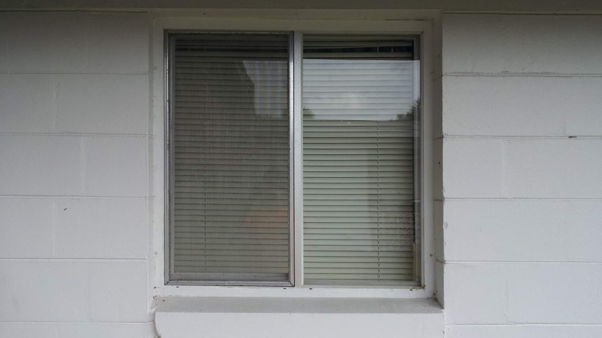window-screen-04.jpg